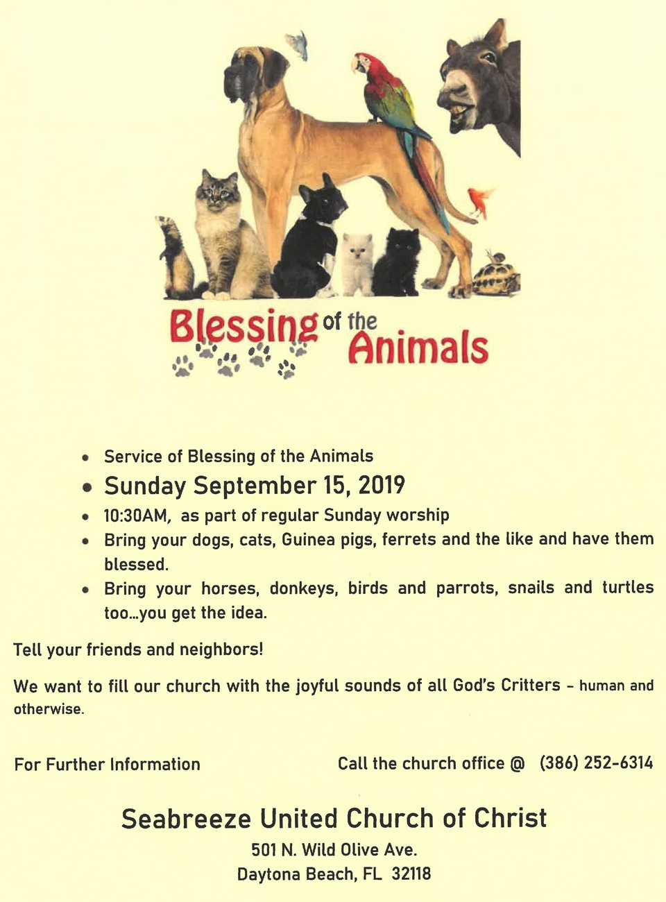 Looking to get your pets blessed?