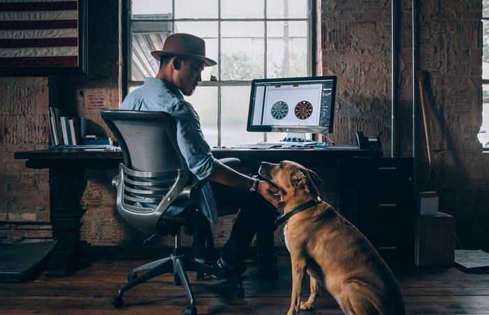 Here's How Dog Owners Can Stay Productive While Working From Home